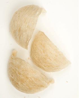ツバメの巣の写真