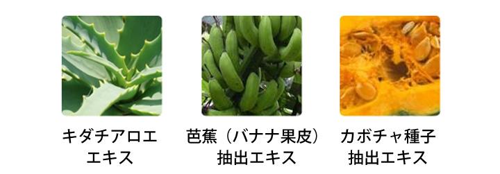 キダチアロエエキス、芭蕉(バナナ果皮)抽出エキス、カボチャ種子抽出エキス